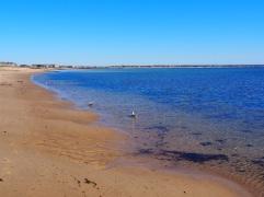 Beach_Provincetown_80