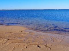 Beach_Provincetown_81