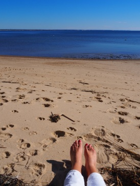 Beach_Provincetown_9b