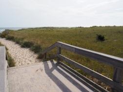 Beaches_UNADJUSTEDNONRAW_thumb_3071