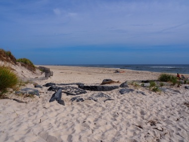 Beaches_UNADJUSTEDNONRAW_thumb_3073