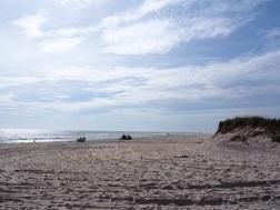 Beaches_UNADJUSTEDNONRAW_thumb_3074