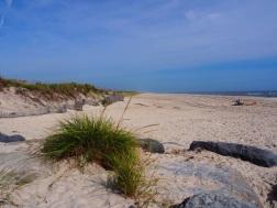 Beaches_UNADJUSTEDNONRAW_thumb_3075