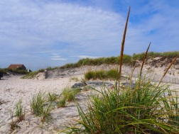 Beaches_UNADJUSTEDNONRAW_thumb_3086