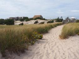 Beaches_UNADJUSTEDNONRAW_thumb_3088