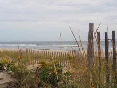 beaches_UNADJUSTEDNONRAW_thumb_30d4