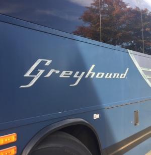 greyhound_canada826