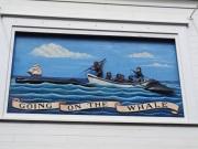 WhalingMuseum