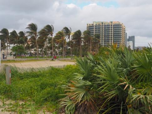 Miami_Beach_423