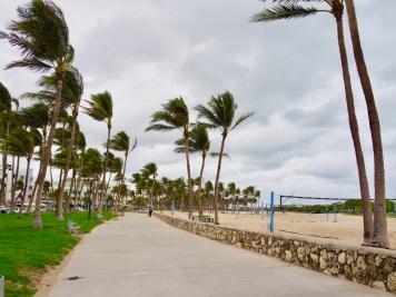 MiamiBeach43