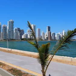 Cartagena1a984
