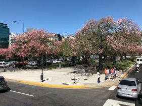 BuenosAires_1bd8e