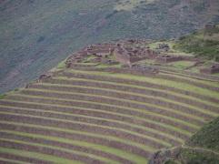 Inka2_1b7c0