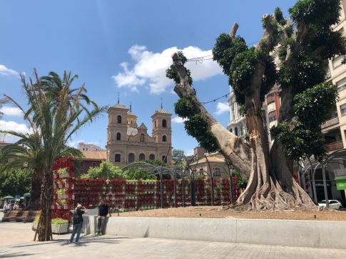 Murcia_1d1ff
