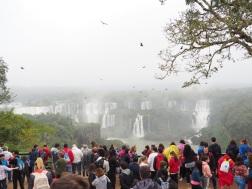 BrasilienIguazu_1e279