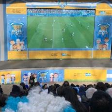 WM_Argentinien_1db38