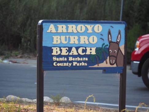 ArroyoBuro_Neu