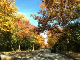 Herbst2018_1f85f