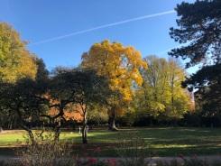 Herbst2018_1fb0b