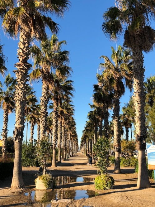 Valencia_Beachclub_1fd11