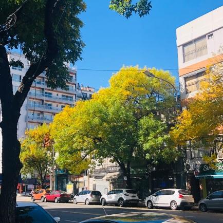 Herbst_2020a